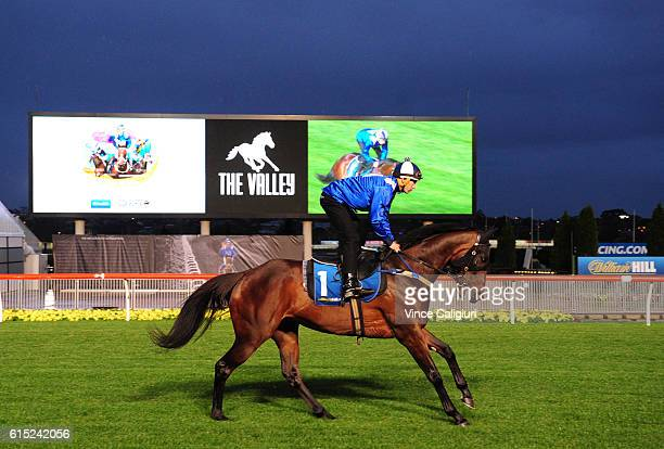 Hugh Bowman riding Winx during Breakfast with the best at Moonee Valley Racecourse on October 18 2016 in Melbourne Australia