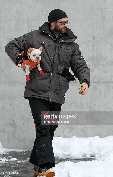 Hugh Jackman is seen walking the puppy Mocha on January 27 2011 in New York City
