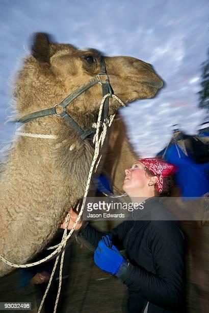 A camel handler and jockey standing beneath her huge racing camel.