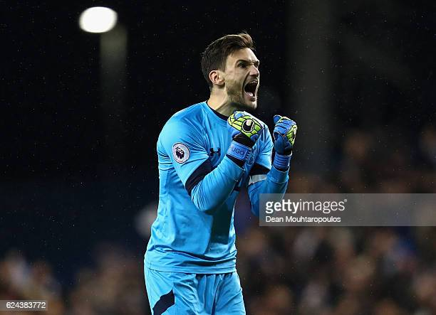 Hugo Lloris of Tottenham Hotspur celebrates his side scoring during the Premier League match between Tottenham Hotspur and West Ham United at White...