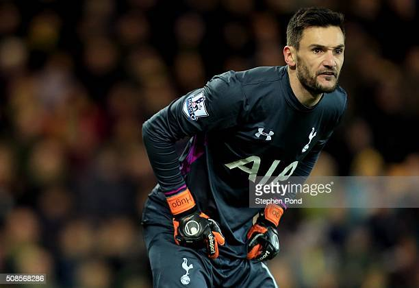 Hugo Lloris of Tottenham Hotspur during the Barclays Premier League match between Norwich City and Tottenham Hotspur at Carrow Road Stadium on...