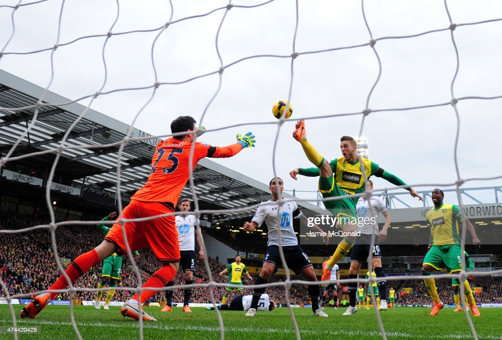 Hugo Lloris of Tottenham Hotspur makes a save from Ricky van Wolfswinkel of Norwich City during the Barclays Premier League match between Norwich City and Tottenham Hotspur at Carrow Road on February 23, 2014 in Norwich, England.