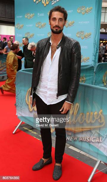 Hugo Taylor attends the press night performance of 'The Wind In The Willows' at the London Palladium on June 29 2017 in London England