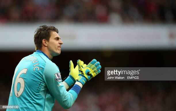 Hull City's Eldin Jakupovic