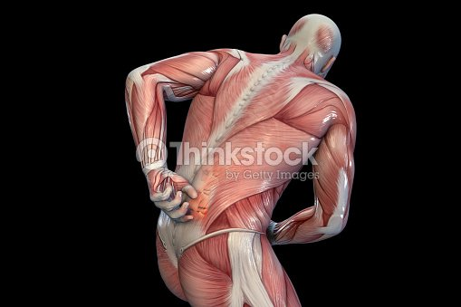 Human Anatomy Anatomical Vision Back Pain Stock Photo | Thinkstock