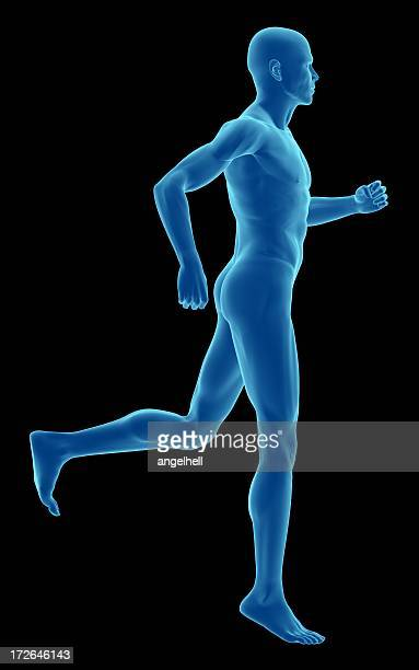 Human body of a man, running