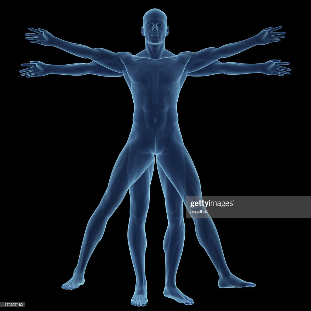 the study of the human body By studying evolution, we better know our own place on a planet with 18 million  identified  have evolved, and that we are not the pinnacle.