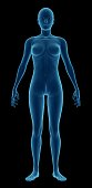 Human body of a woman for study