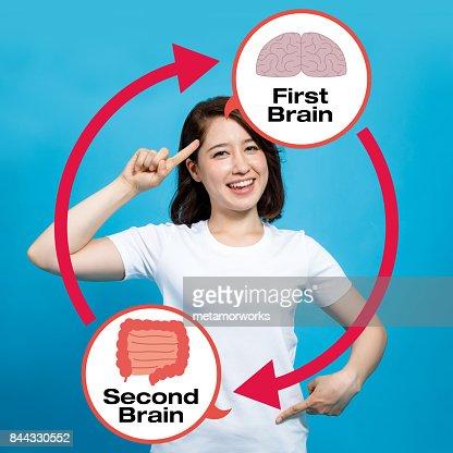 human brain and guts, second brain : Stock Photo