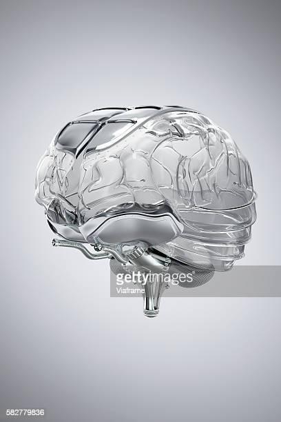 Human Brain model made of glass