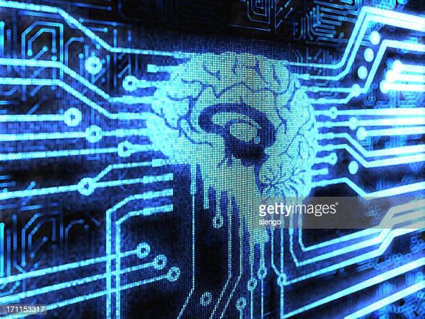 Human Gehirn