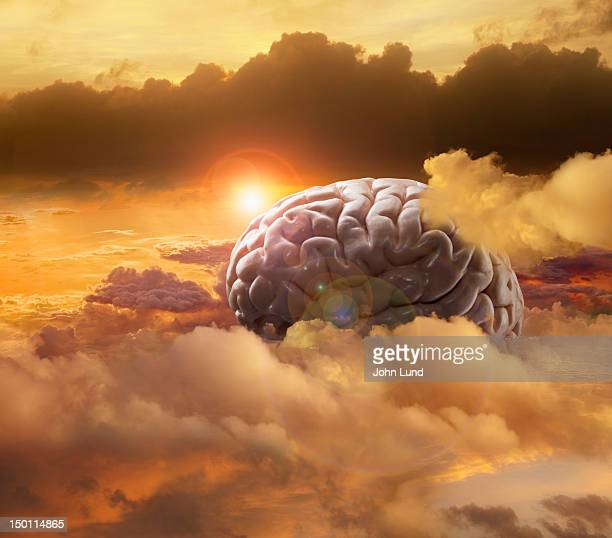 A human brain rests in a high altitude cloudscape