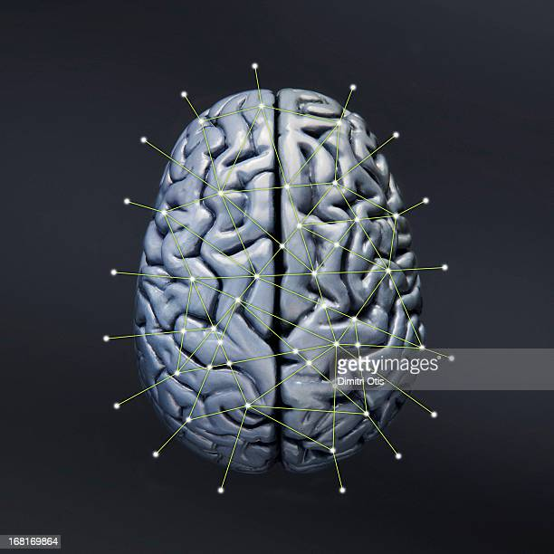 Human brain showing neural connections