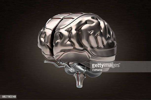 Human brain with armor