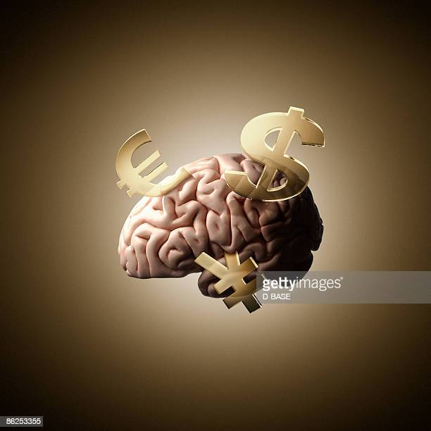 human brain with currency sign