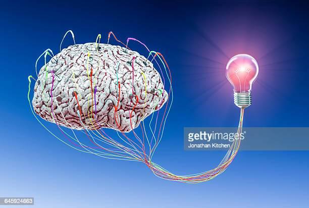 Human Brain with light bulb 2