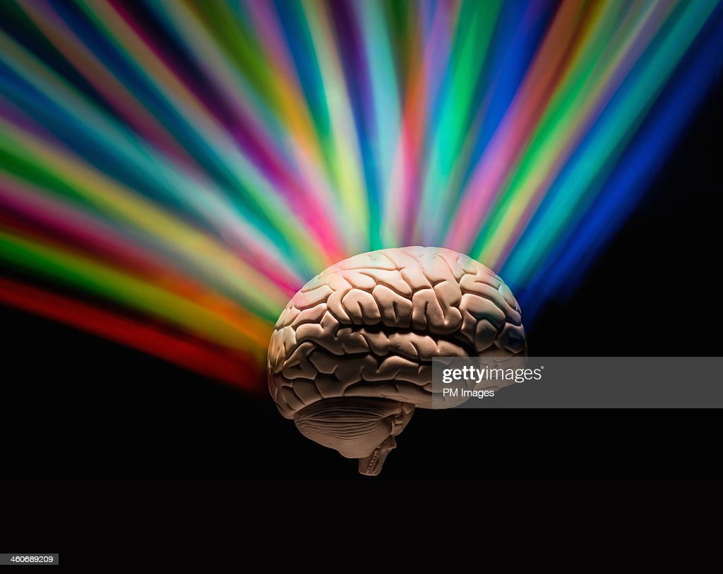 Human brain with rainbow colors : Stock Photo