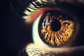 Human eye iris close up. Brown eye brightly lit, macro shot. Vertical composition.