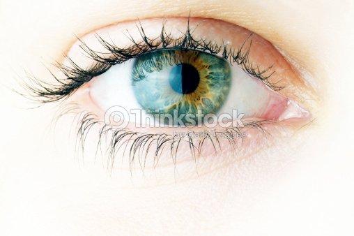 Human eye. macro shooting... : Stock Photo