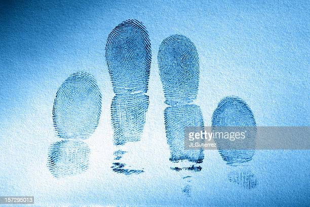 Human fingerprints with a blue tint to the page
