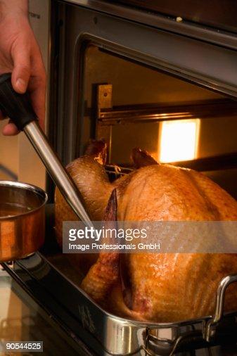 Human hand basting turkey with roasting juices, close up