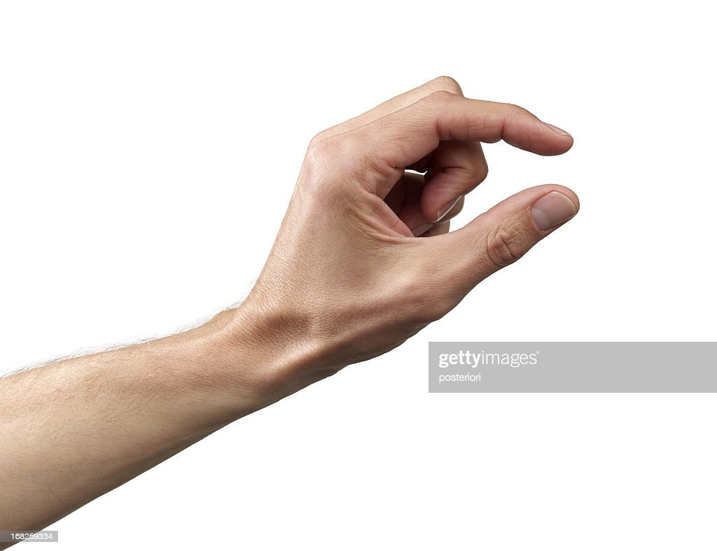 Human Hand : Stock Photo