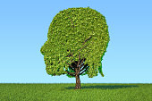 Human head shaped tree on the green grass against blue sky, 3D rendering
