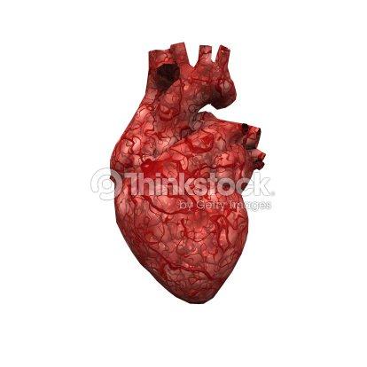 Menschliches Herz Stock-Foto   Thinkstock