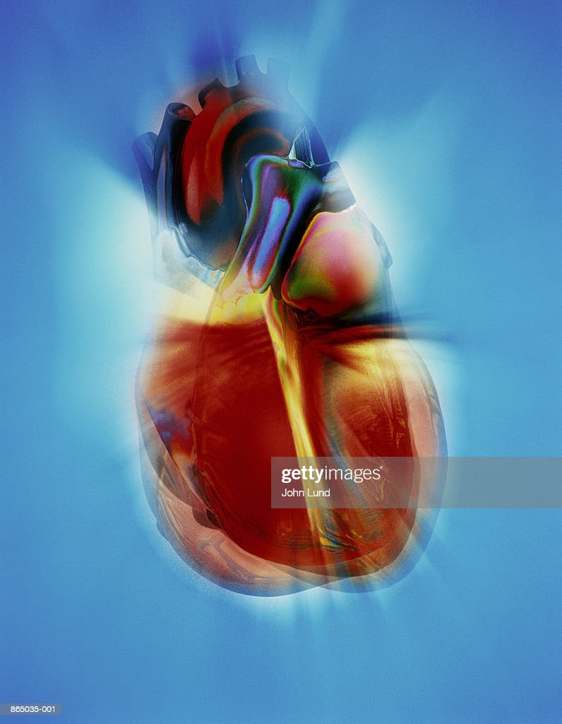 Human heart (Digital Composite) : Stock Photo