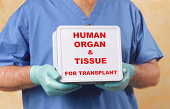 Human organ and tissue transplant