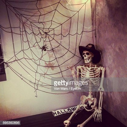 human skeleton against the wall stock photo | getty images, Skeleton