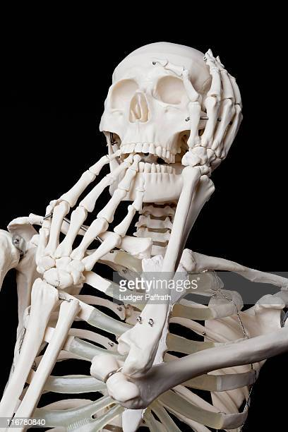 skeleton stock photos and pictures | getty images, Skeleton