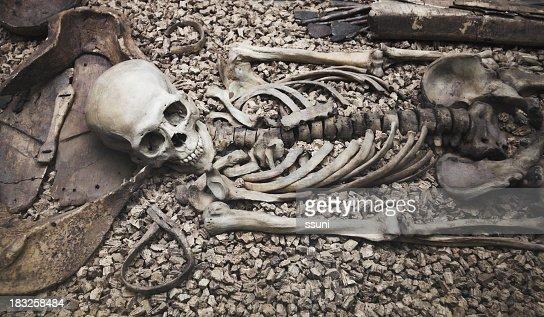 Human skull and bone remains laying on rocks
