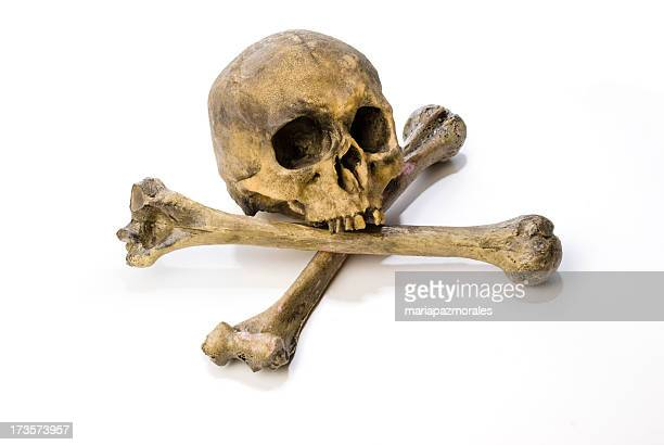 Human skull and cross bones on a white background
