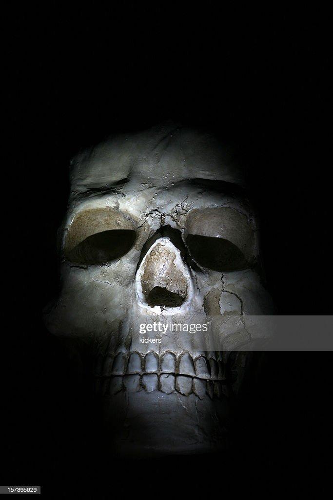 Human skull isolated on black : Stock Photo