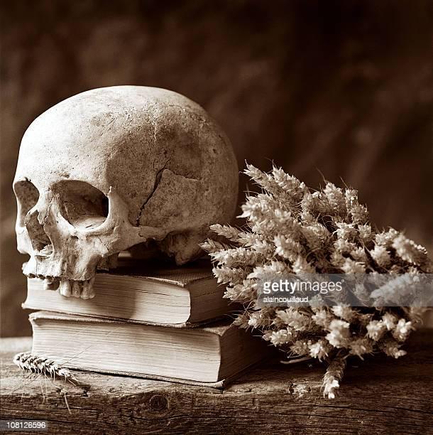 Crâne humain se reposer sur des livres, sépia