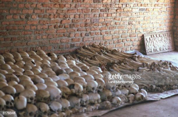 Human skulls and bones of victims of the Rwandan massacre sit in piles at a memorial site in Murambi Gikongoro province Rwanda 1994