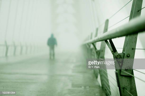 Humber River Pedestrian Bridge