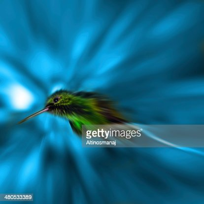 Humming Bird Zoom blured effect Blue background : Stockfoto