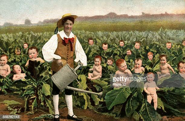 everybody knows that babies were born in cabbages France