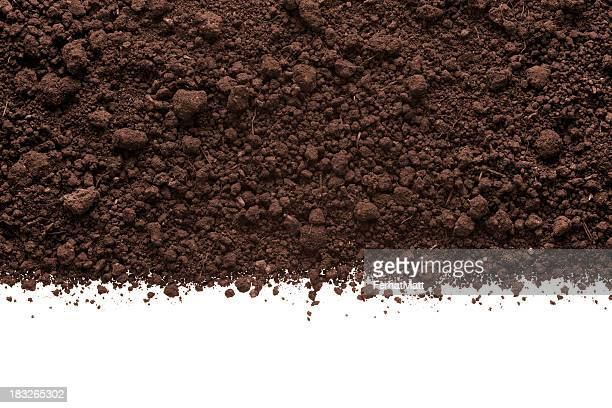Humus Soil