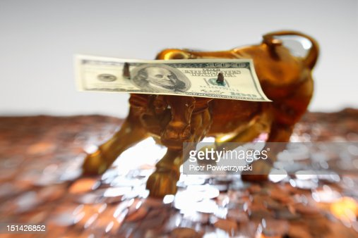 A hundred dollar bill on the horns of a model bull : Stock Photo