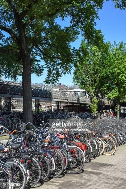 Hundreds of bicycles parked in a public bicycle parking lot in Amsterdam, Netherlands