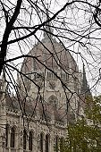 Hungarian Parliament Building  and winter trees in Budapest, Hungary