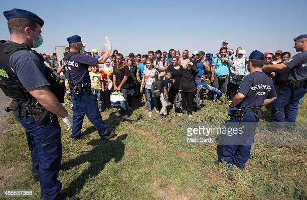 Hungarian police officers control migrants who have just crossed the border from Serbia into Hungary as they wait for buses to be organised by the...
