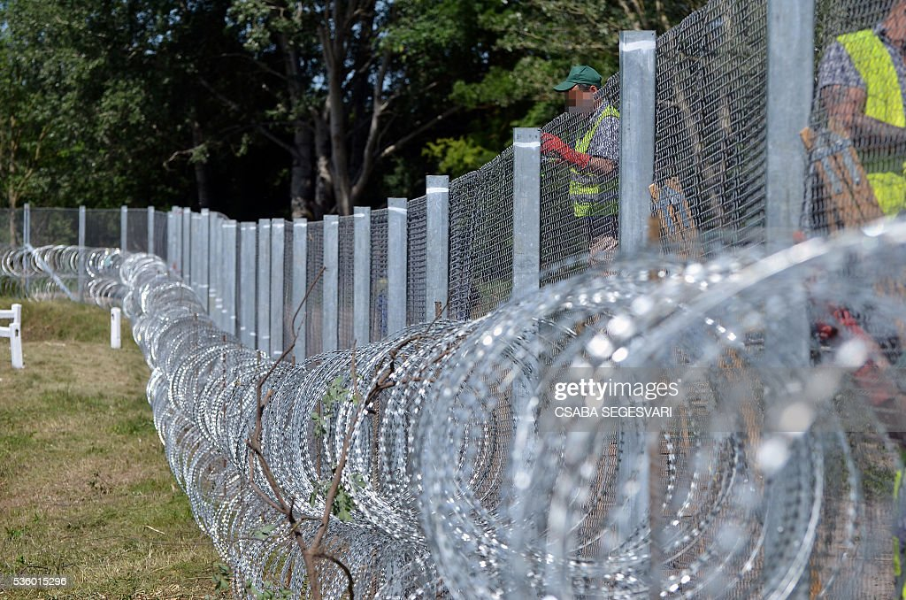 Hungarian prisoners prepare a new part of fence near Asotthalom village on May 31, 2016 as Hungary bolsters anti-migrant fence on Serbia border following an increase in arrivals after the evacuation of Idomeni camp on the Greece-Macedonia frontier. Hungarian authorities said some people had managed to make their way up the migrant route, despite the border closure imposed in mid February by many Balkan states in a bid to halt the influx to northern Europe. / AFP / Csaba SEGESVARI