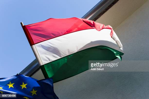 Hungary and European Union Flags