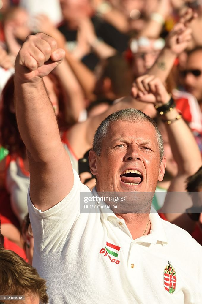 A Hungary supporter cheers during the Euro 2016 round of 16 football match between Hungary and Belgium at the Stadium Municipal in Toulouse on June 26, 2016. / AFP / Rémy GABALDA