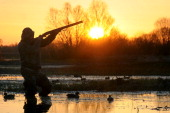 A hunter aims and prepares to shoot a wild duck on Pripyat's river not far from the village of Veresnitsa some 260 km south of Minsk on April 5 2014...