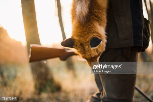 Hunter carrying dead fox